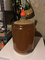 just prior to racking for lagering (found_drama) Tags: germanpils tildegravitywerks homebrew homebrewing lager essexjunction vermont vt 05452