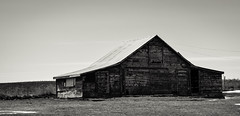 Old Barn, Acton, Mt. (cutthroatsrule) Tags: monochrome acton montana barn field sky abandoned