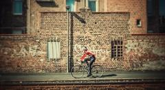 Radfahrer... (hobbit68) Tags: bike frankfurt fechenheim fahren fahrrad wall maurt laterne laternenmast windows fenster