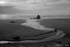 Fresh Water Meets the Sea, Cannon Beach (Gary L. Quay) Tags: cannonbeach cannon beach oregon pacific ocean sea coast northwest water gary quay garyquay nikon d810 nikkor sunset black white landscape
