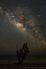 DSC_0418-2 (dwhart24) Tags: stars astrology astronomy milky way long exposure night sky david hart nikon d500