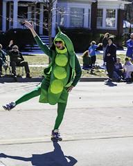 St. Patrick's Day parade in Bay City, Michigan 2018 (TAC.Photography) Tags: stpatricksday patricksdayparade green greenpea dancing wave smile laugh tacphotography tomclarknet
