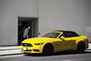 (SONICGREGU) Tags: streetsoftoronto street yellowmustang yellowcar fordmustang ford selectivecolor selectivecolour nikond610 fullframe nikon canada ontario toronto