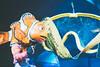 Finding Nemo - The Musical (dolewhip) Tags: findingnemothemusical findingnemo disney wdw dak animalkingdom dinoland theaterinthewild