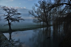 View from a bridge. (pstone646) Tags: river mist trees landscape nature water reflections sky sunrise dawn kent clouds silhouettephotography silhouette stour
