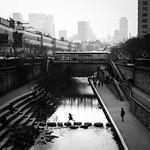 Jump - Seoul, South Korea - Black and white street photography thumbnail