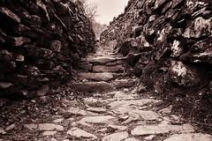 The path ahead (Jonathan Tallon) Tags: path way lakedistrict helmcrag lionandthelamb outdoors landscape blackandwhite monochrome canon nature spirituality grasmere cumbria