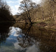 reflections - Bradford Dale (westoncfoto) Tags: