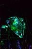 """Eden"" by Fredrikson Stallard [Wattens - 24 August 2017] (Doc. Ing.) Tags: museum 2017 innsbruck tyrol austria at swarovski kristallwelten swarovskikristallwelten swarovskicrystalworld wattens eden fredriksonstallard patrikfredrikson ianstallard chambersofwonder forest brass mirror metal green crystal insect"