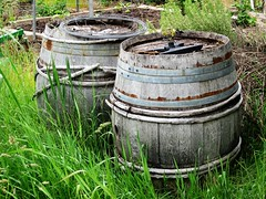 Old oak barrels (fromkin) Tags: wood staves metal bands