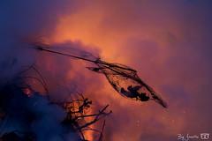 Bonfire / DN9A3620 (Josette Veltman) Tags: easter bonfire fire vuur paasvuur pasen vlammen heino overijssel traditie tradition nederland netherlands