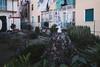 Casale Monferrato, febbraio 2018 (Manuel Scalas) Tags: casale casalemonferrato documentary documentaryphotography everybodystreet giardini oltreponte photoonthego snapshot voyeur aquilareale garden paesaggio personalphotography viaggioinitalia