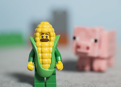 Corn Cob guy does not like pigs (N.the.Kudzu) Tags: tabletop lego minifigures corncob guy pig canondslr primelens manualfocus russianlens lightroom