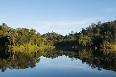 A Jungle Lake's Reflection (idris.photography) Tags: canon 800d brunei lake reflection rainforest jungle