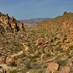 Oranges, Greens Browns of a Desert Landscape (Big Bend National Park) thumbnail