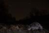 Stardust (Kristóf Diós) Tags: beaver eurasian castor fiber stars stardust night nighttime sky astro astrophoto mammal camera trap camtraptions wide angle animal nature wildlife baja hungary magyarország magyar hód flashes landscape habitat lake lakeside shore shoreside dark