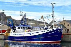 FR366 Harvest Moon - Fraserburgh Harbour Scotland - 19/4/2018 (DanoAberdeen) Tags: trawlermen fraserburghscotland fraserburghharbour fraserburgh danoaberdeen nikond750 nikkor fish fishing fisherman seafarers trawlers tug tugboat scotland autumn summer winter spring clouds bluesky salmon haddock cod scallops candid amateur northeastscotland maritime northsea aberdeenshire grampian metal fr366harvestmoon harvestmoon harbour trawler winte 2018 trout mackrel fishingboat nikon aberdeen shipspotting fishauction bonnyscotland fishtown fishingvillage thebroch broch dock boat ship vessel scottishtrawlers fishingtrawlers whitefishport whitefish shellfish creels