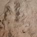 VAN DYCK Antoon - Tête d'Homme barbu, de profil (drawing, dessin, disegno-Louvre RF29063) - Detail 7