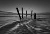 Dunedin (Jingshu Zhu) Tags: monochrome seascape wave newzealand dunedin beach