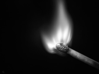 the white flame