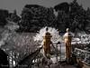 Roma 26 febbraio 2018 (frillicca) Tags: 2018 alberi ambientazione cancello febbraio february gate neve panasoniclumixlx100 pilastro pillar roma snow trees