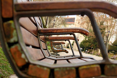 Benches (Daniel Nebreda Lucea) Tags: perspective perspectiva composition composicion exploration exploracion lines lineas bokeh focurs enfoque enfocar shapes formas banch banco banches bancos park parque light luz street calle city ciudad texture textura travel viajar urban urbano urbana canon 60d 50mm burgos benches