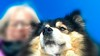 The King and I (evakongshavn) Tags: evaselfie selfie dogselfie winterishselfie kingaiko 7dwf
