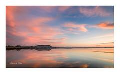 Pretty in Pink (RonnieLMills) Tags: prettyinpink scrabo tower strangford lough high tide early morning reflections pink clouds newtownards county down northern ireland