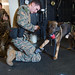 Marines aboard the 31st MEU prepare a military working dog for a Visit, Board, Search and Seizure drill