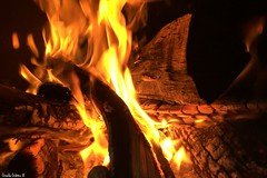 Vida y muerte. (Orcoo) Tags: fuego fire lumbre leña color colores colors