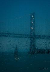Sailing (Bernardo Fuchs M) Tags: digital color luz monocromático siluetas formas paisaje agua