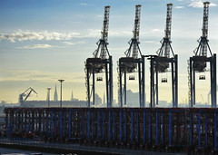 Hamburg, toller Ort (jens.lilienthal) Tags: hamburg container terminal tollerort hafen harbor port germany europe elbe kran crane trade sky silhouette elbphilharmonie skyline commercial urban idustrial