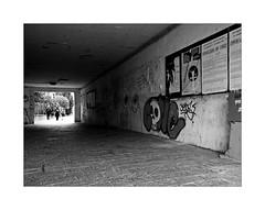 Underpass (Franco & Lia) Tags: venezia veneto venice giudecca sottopassaggio underpass biancoenero noiretblanc blackwhite street fotografiadistrada photographiederue