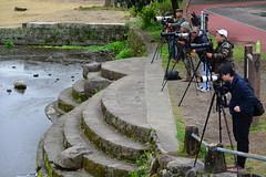 The birdwatchers (Mark Tindale) Tags: photography enthusiasts japanese japan cameras birdwatching twitchers park suizenjiezuko kumamoto kyushu pond lake