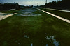 Reviving green (threepinner) Tags: mikawa hokkaidou yuni northernjapan japan railway jr jr北海道 canon av1 daytime spring nfd 28mm f28 negative iso100 selfdeveloped reversal negaposidevelopment 三川 由仁 由仁町 北海道 北日本 日本