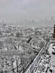 April white blanket over Manhattan (dannydalypix) Tags: centralpark nyc manhattan gotham blackandwhite newyorkcity blizzard snow