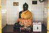 Black Budha, Nalanda (Rohit Tulsiyan) Tags: budha statue black stone people ruins nalanda university disciples apply gold foils idol wishes fulfilled