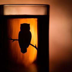 maple syrup / sirop d'érable (HW111) Tags: macromondays condiment maplesyrup owl shotglass no1medium canadian glow hmm 7dwf silhouette