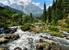 Natural wonder called Kashmir.. (Vibhutius) Tags: kashmir valley river water beautiful scenery nature horse green india landscape nikon