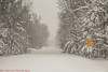 April 14-15 2018 Blizzard (Dan's Storm Photos & Photography) Tags: snow skyscape skyscapes sky snowfall snowstorm snowy snowflakes snowsquall snowsqualls snowshower blizzard weather wisconsin landscape landscapes heavysnow winter winterlandscape winterstorm winterweather nature whiteout