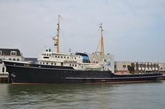 Elbe (Hugo Sluimer) Tags: sleepboot sleepboothaven maassluis nederland zuidholland holland nederlands portofrotterdam port haven nlrtm onzehaven
