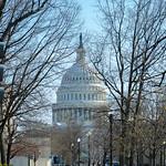US Capitol from Lower Senate Park thumbnail