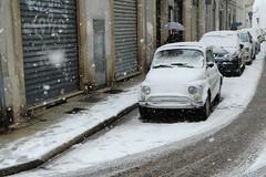 Vercelli sotto la neve (STE) Tags: vercelli neve snow marzo 2018 snowy fuji fujifilm xt20 snowing nevicata white bianca bianco 2017 nevica fiat cinquecento 500 inverno winter freddo cold