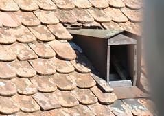 roof tiles (Hayashina) Tags: moravia czechrepublic mikulov rooftile texture window