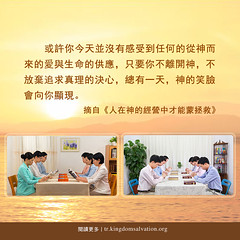 CKF007S-人在神的經營中才能蒙拯救-CN (追逐晨星) Tags: 生命格言 神的作工 神的性情 神的经营 造物主 道成肉身 全能者 神的爱 拯救 人类