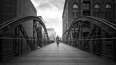 Bridgewalk mono (frank_w_aus_l) Tags: hamburg monochrome anna nikon d800 nikkor 1635 clouds city bridge architecture human humaningeometry geometry depth person speicherstadt steg bw sw blackandwhite noiretblanc deutschland de germany netb
