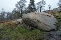 NB-2.jpg (neil.bulman) Tags: countryside longshawestate tree peakdistrict nature nationalpark derbyshire longshaw trees rocky rocks derbyshiredalesdistrict england unitedkingdom gb