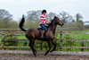 Cindy and Sophie Lesson-114.jpg (Steve Walmsley) Tags: lily jacinta horses sophie twoie lesson cindy