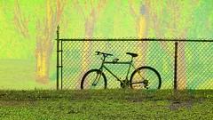 mani-404 (Pierre-Plante) Tags: art digital abstract manipulation painting