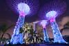 Supertrees (dichiaras) Tags: singapore asia equator architecture skyscraper marinabay marinabaysands night nikon gardens